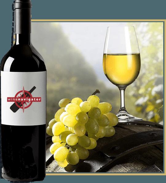 kieliszek wina i winogrono